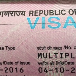 Indian Visas Fast, Requirements, Processing and Online